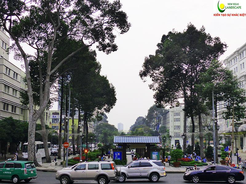 đường phố