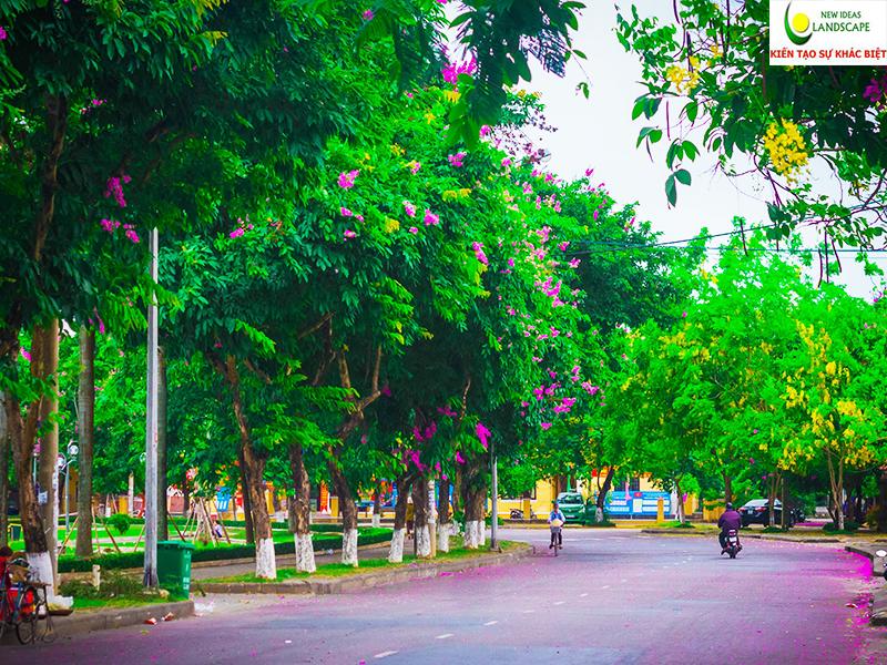 đường phố cây xanh